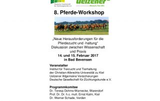 8. Pferde-Workshop