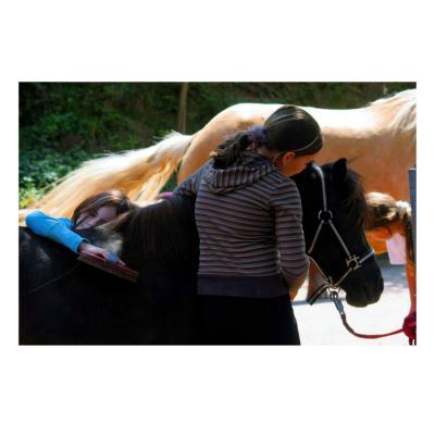 Kinder und Pferde HorseFuturePanel