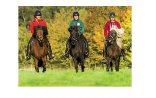 4. nationale Pferdetourismuskonferenz 2018 in Luhmühlen