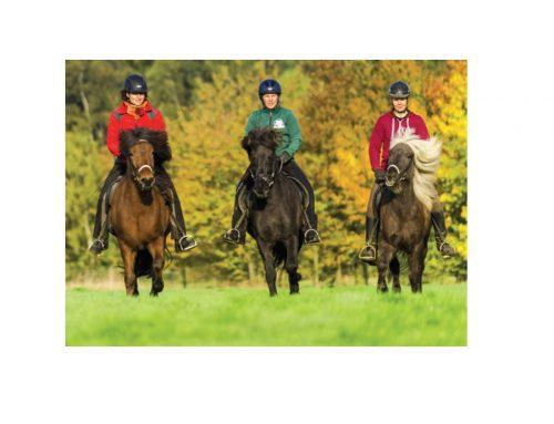4. nationale Pferdetourismuskonferenz 2018