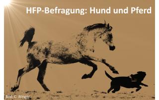 Hund und Pferd - HorseFuturePanel FB