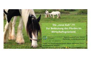Umfrage zur Grünlandnutzung in der Pferdehaltung