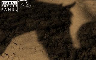 HFP-Bild Schatten