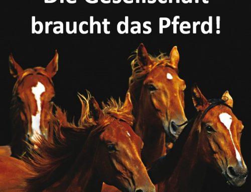 Landwirtschaftsminister Günther: Pferde sind in vielen Lebensbereichen unverzichtbar