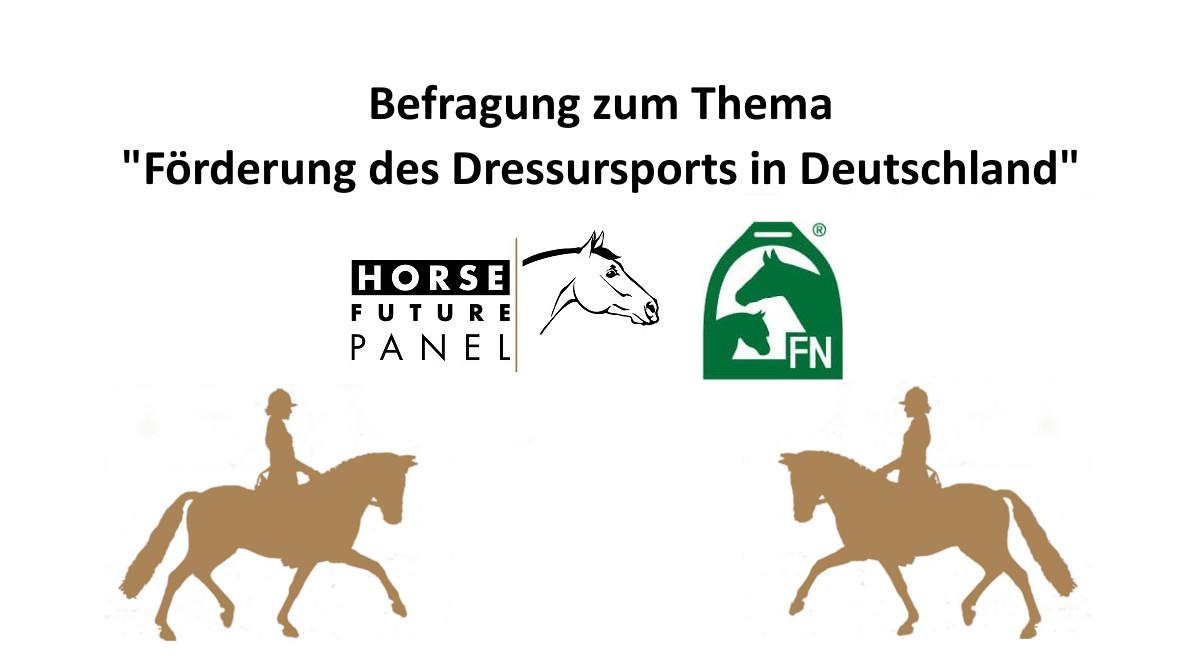 """HFP-Befragung """"Förderung des Dressursports in Deutschland"""""""