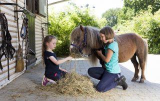Pferde für unsere Kinder e.V. Kinder füttern Pony - c Thomas Hellmann