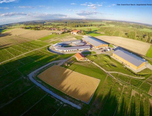 Gesucht: Pferdebetriebe mit Qualität!  Start des Wettbewerbs QUALITÄTSBETRIEBEN GEHÖRT DIE ZUKUNFT 2020