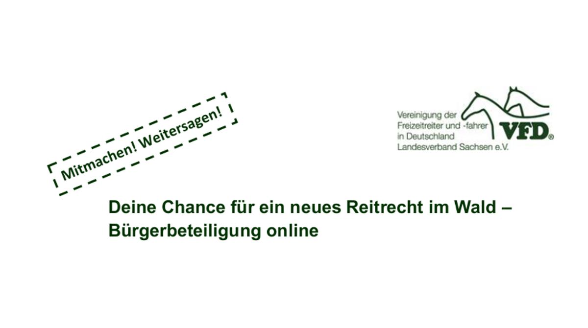 Reitrecht im Wald - VFD 2020